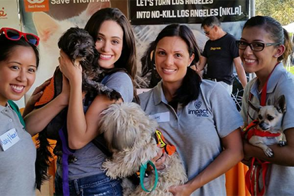 Volunteering with Best Friends Animal Society